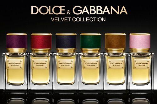 Dolce & Gabbana - Velvet Collection 1