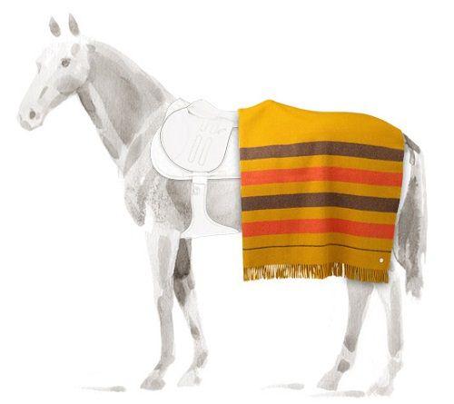 Hermes koń z derką