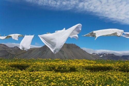 świeże pranie na wietrze