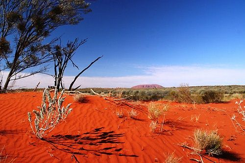 czerwona pustynia