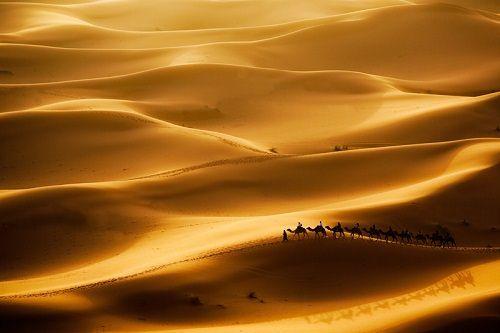 desert & sand