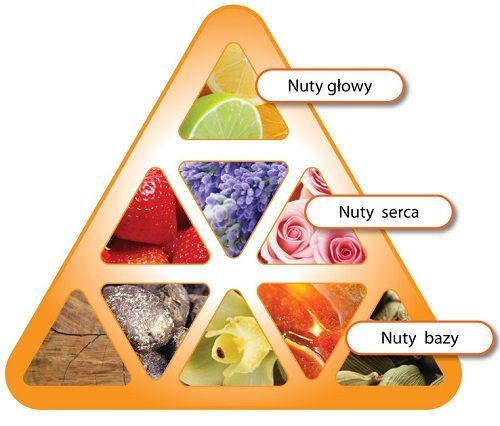 piramida zapachowa