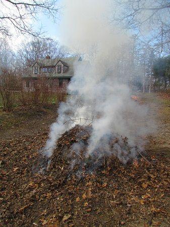 dym z palonych liści