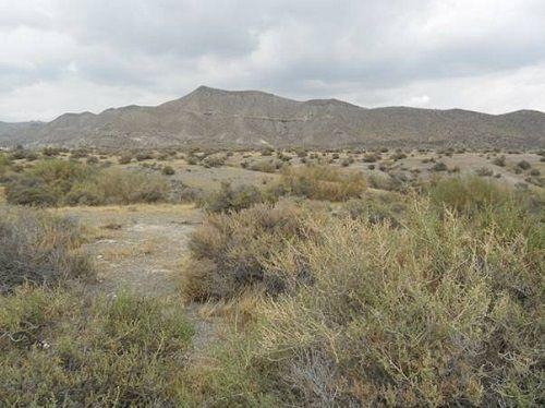 hiszpańska pustynia